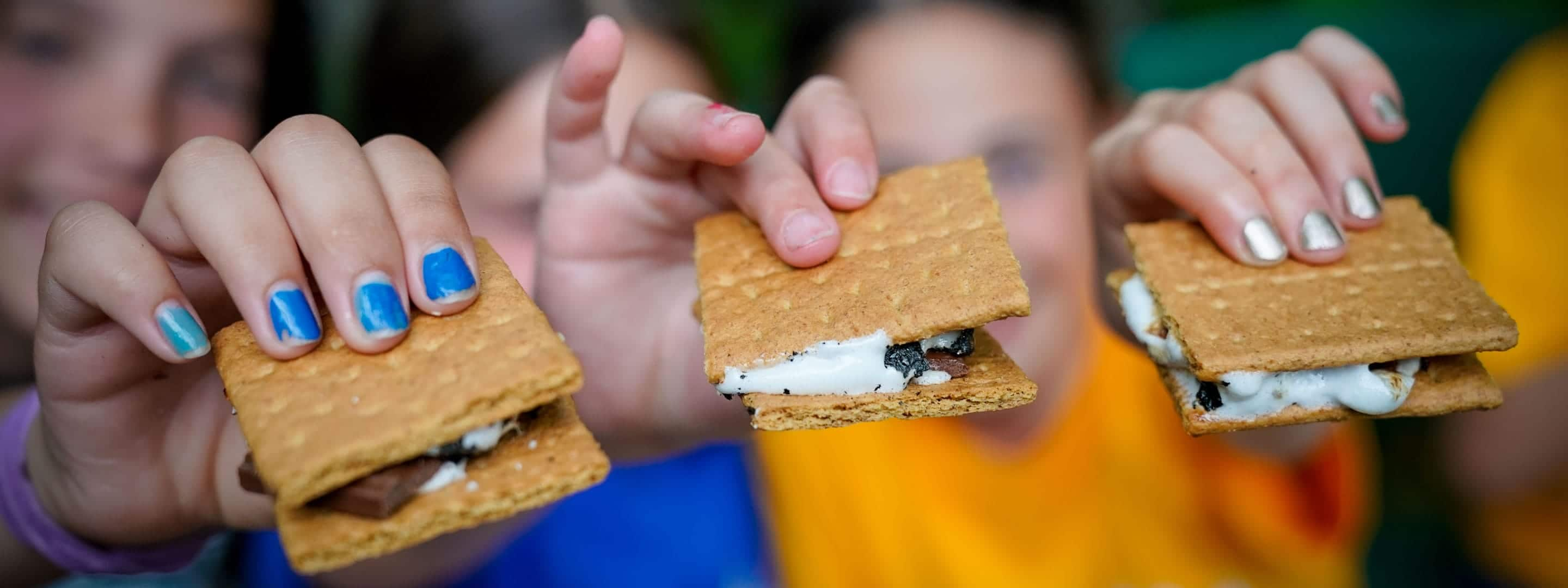 campers holding smores up to camera